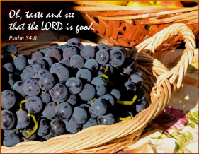 """""""Oh, taste and see that the Lord is good; Blessed is the man who trusts in Him."""" Psalm 34:8 (source: http://hilldaleworship.blogspot.com.au/2012/02/150-days-of-psalms-psalm-34.html)"""